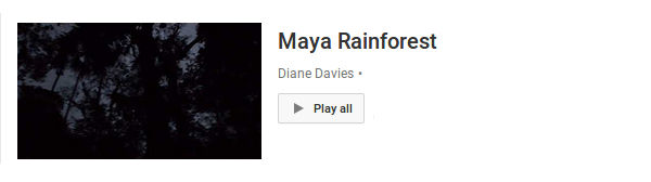 Maya Rainforest Video Gallery