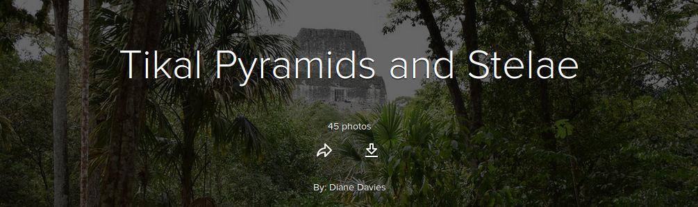 Tikal-pyramids-stelae