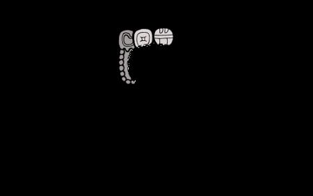 Maya-Emblem-Glyphs